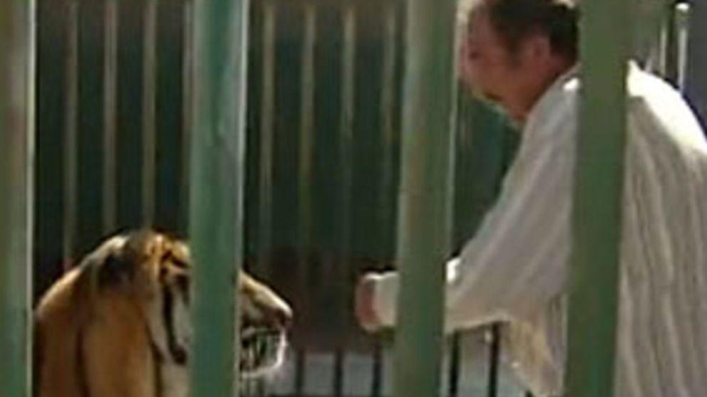 Atacado por un tigre en directo en 'Espejo Público'