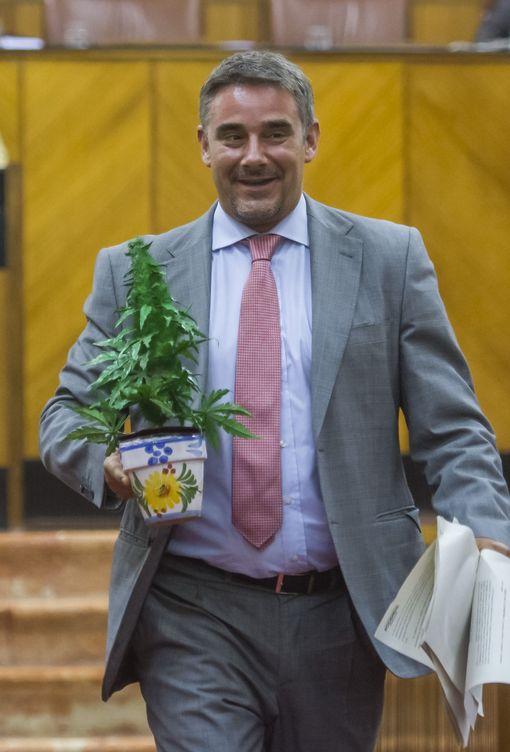 El diputado de Podemos en Andalucía, Juan Ignacio Moreno Yagüe, porta una maceta de cannabis. (EFE)