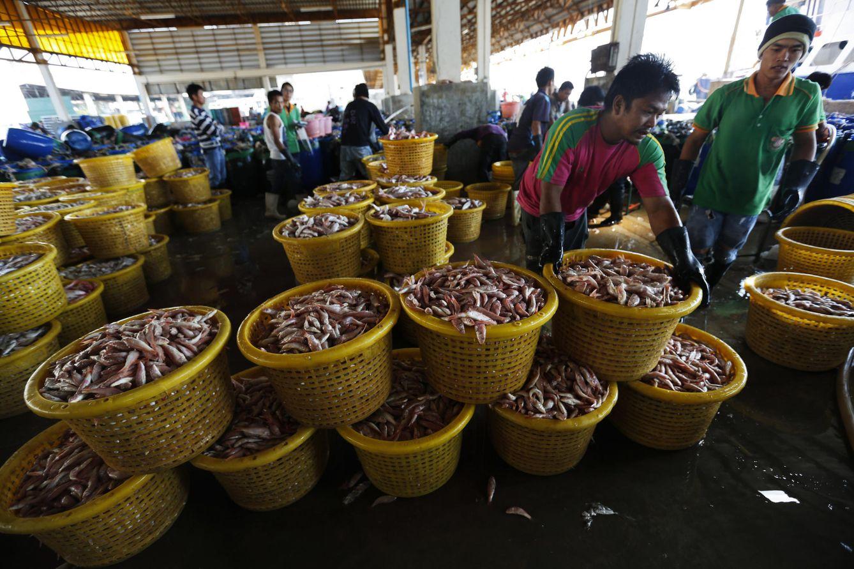 Foto: Trabajadores en un mercado de pescado y marisco en Mahachai, Tailandia, el 28 de enero de 2016. (Reuters)