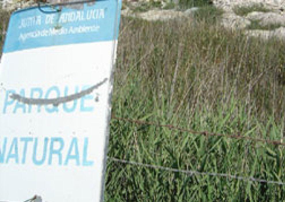 Foto: La organización Ecologistas en Acción denuncia el riesgo que supone la existencia de dos vertederos ilegales en el entorno del emblemático paraje.