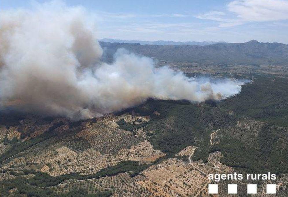 Foto: El incendio en Perelló. (Agents rurals)