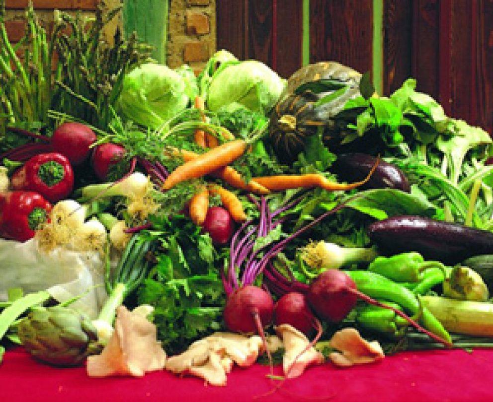 Foto: Una estricta dieta vegetariana mejora los síntomas de la artritis