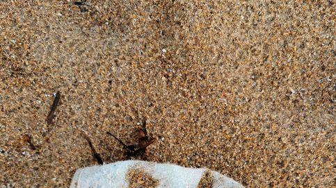 Seis millones de mascarillas usadas acaban en el mar
