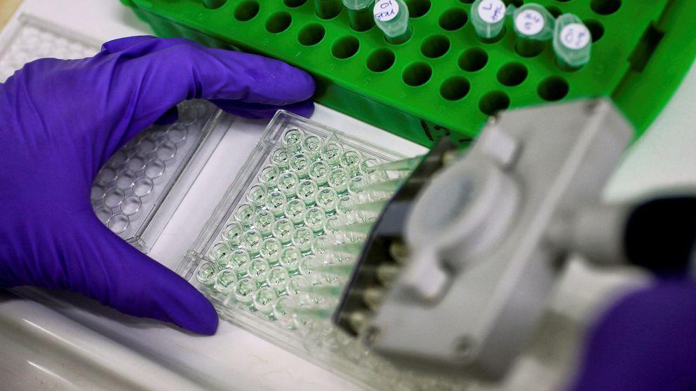 Un tumor virtual en 3D, la fórmula nunca vista hasta ahora de estudiar el cáncer