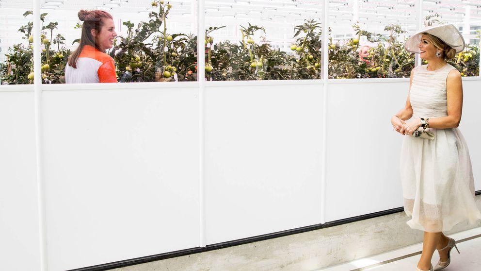 Máxima de Holanda: así será su vuelta al trabajo, tras un triste aniversario