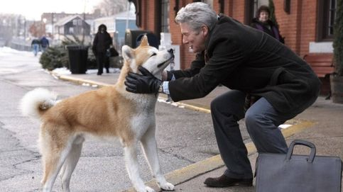 Las historias más tiernas sobre las mascotas, contadas por sus dueños