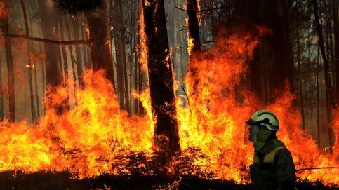 La Xunta investiga a varias personas por los fuegos que han quemado mil hectáreas