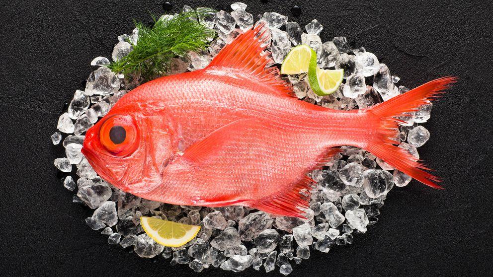 Dónde comer virrey, el pez aristocrático