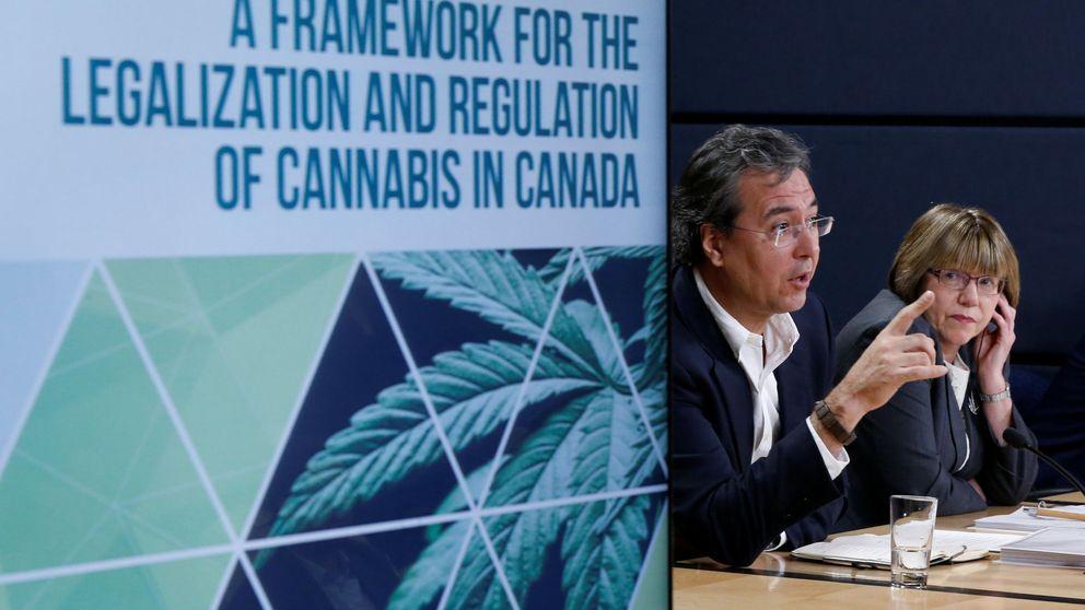 Podemos ultima una ley del cannabis con licencias de venta autorizadas por el Estado