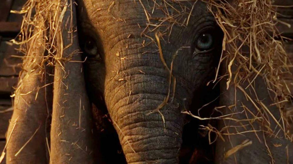 Foto: Así es el elefante protagonista del 'Dumbo' de Tim Burton. (Disney)