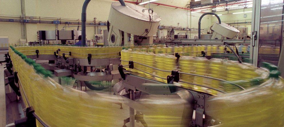 Foto: Embotelladora de aceite de oliva en Jaén (Efe)