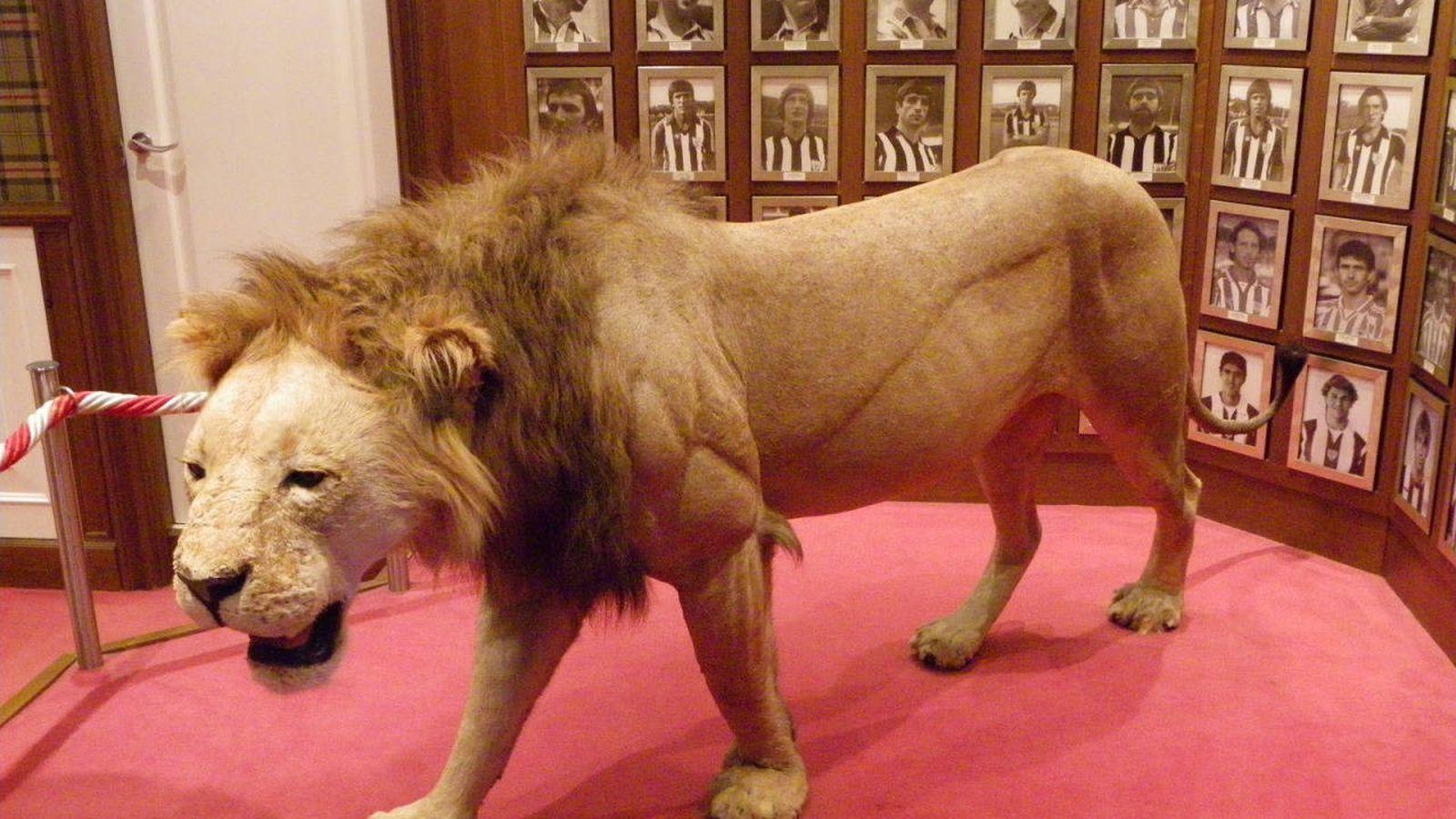 Foto: Imagen del famoso león que hay en San Mamés