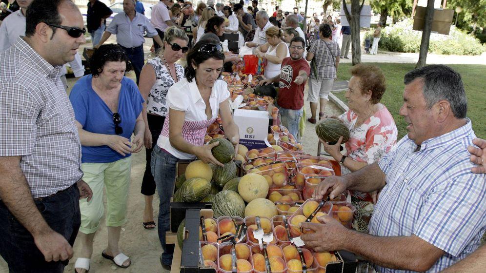 Foto: Agricultores murcianos entregando a los ciudadanos fruta en un mercado solidario. (EFE)