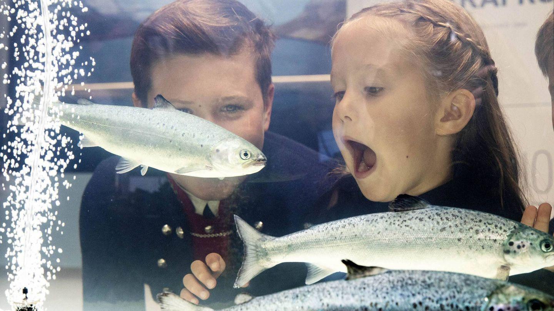La princesa Josephine y el príncipe Christian miran unos peces durante su visita a las Feroe. (CP)