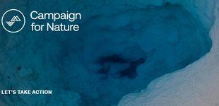 Post de Un multimillonario suizo donará mil millones de dólares para salvar el planeta