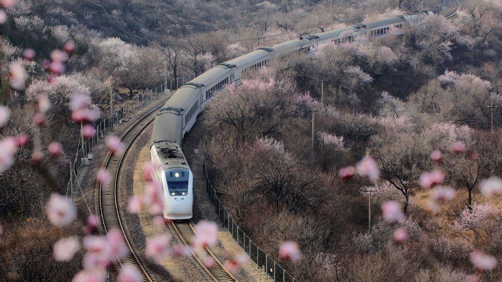 Foto: El tren viaja durante dos días y una noche para que los mil solteros se conozcan (Reuters)