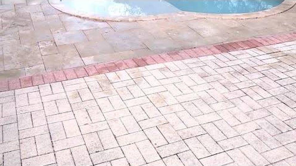 La extraña aparición en una piscina de un cocodrilo de tres metros