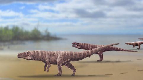 ¿Cocodrilos antiguos sobre dos patas? Unos investigadores así lo creen