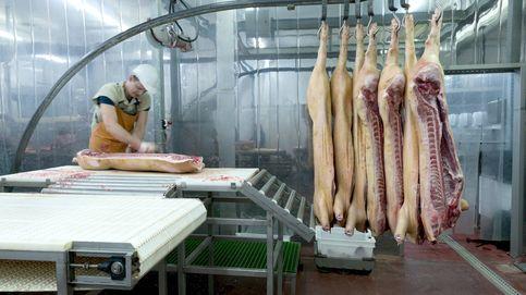 Cámaras de seguridad en los mataderos: la industria cárnica, vigilada