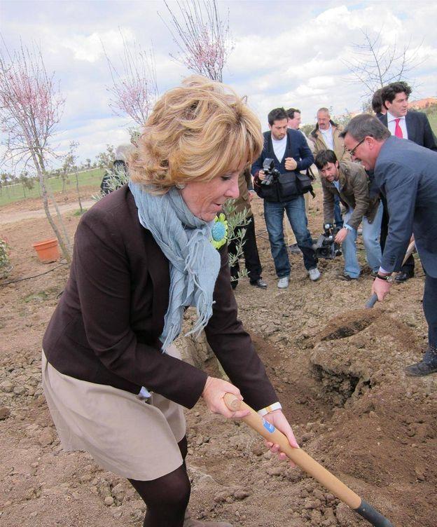 Foto: Aguirre, plantando un árbol en Leganés, en 2011