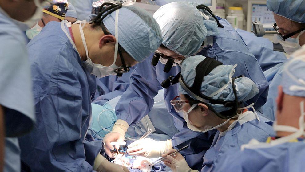 Aumenta un 3% el número mundial de trasplantes, y España repite su liderazgo