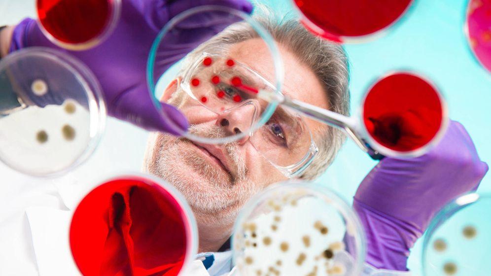 Foto: El exceso de limpieza en nuestra sociedad nos estágenerando problemas inmunitarios (Foto: iStock)