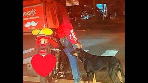 El amor de un repartidor por un perro callejero que desembocó en adopción