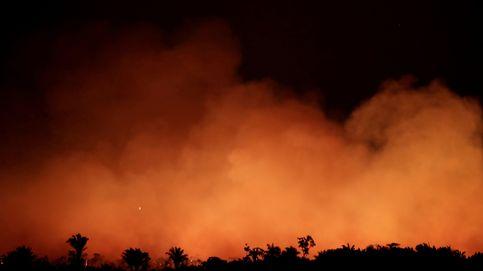 Estas fotos no son del incendio del Amazonas (aunque muchas otras sí)