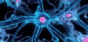 Post de Un nuevo y efectivo tratamiento permite curar fístulas con células madre
