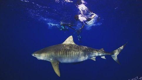 Zac Efron nada entre tiburones sin protección