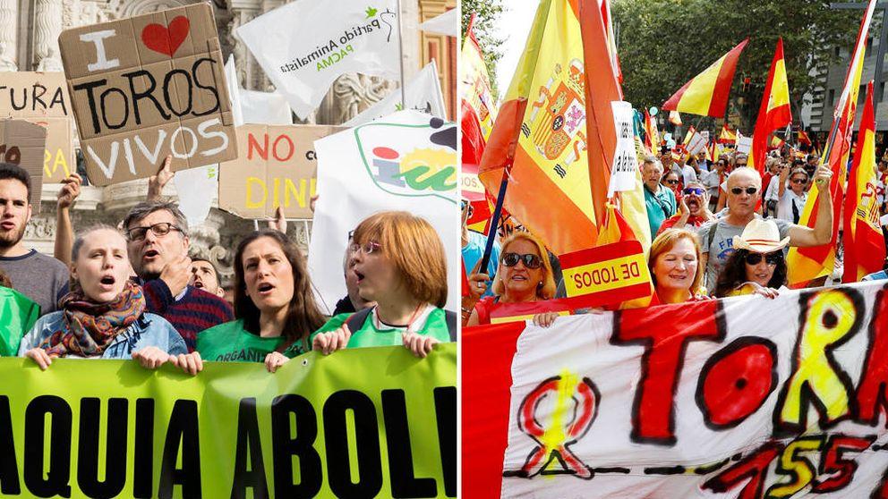 Mujeres de 33 años y varones de 55: la ola que lleva a Pacma y a Vox al Congreso