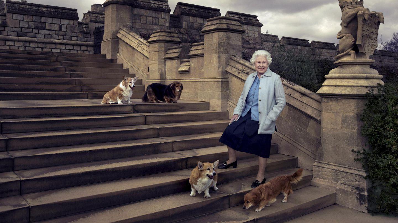 La reina Isabel II, junto a sus perros: dos corgis y dos dorgis.