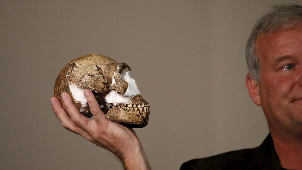 Descubren al 'Homo naledi', una nueva especie de homínido