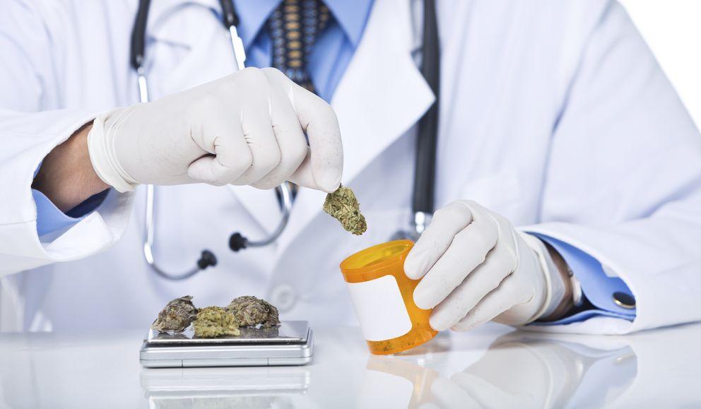 Foto: La marihuana tiene un importantísimo potencial terapéutico. (iStock)