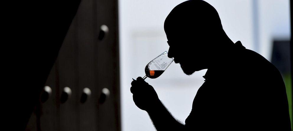 Foto: Demuestran que el vino contiene probióticos beneficiosos para la salud