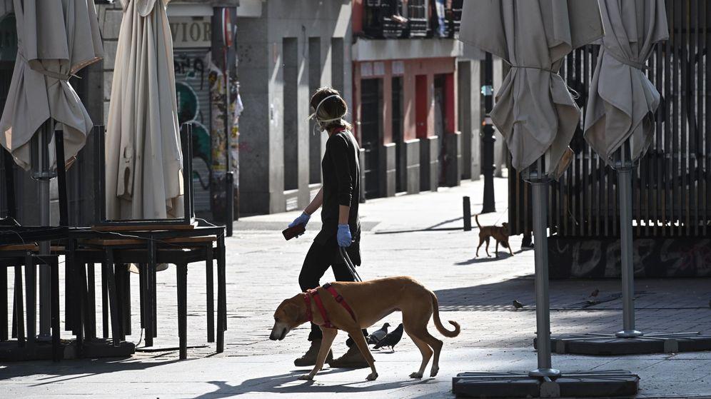 Foto: Un viandante pasea al perro por la plaza de Lavapiés. (EFE)