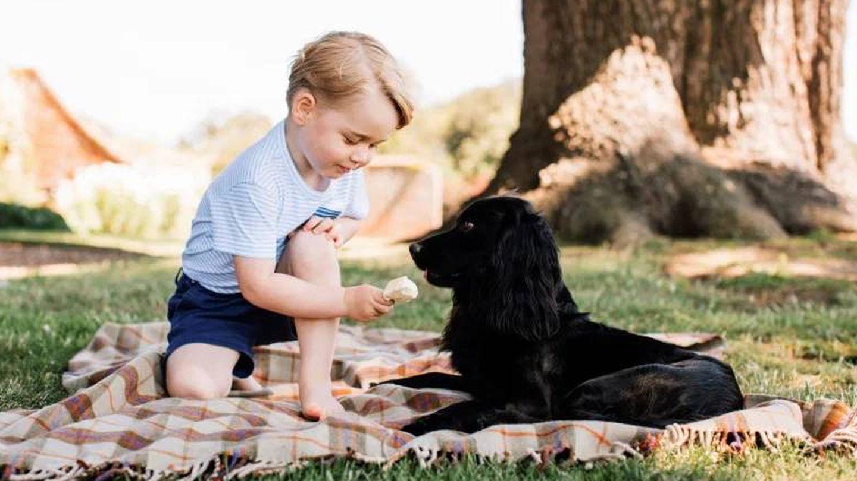 George, en su tercer cumpleaños, con Lupo. (Palacio de Kensington)