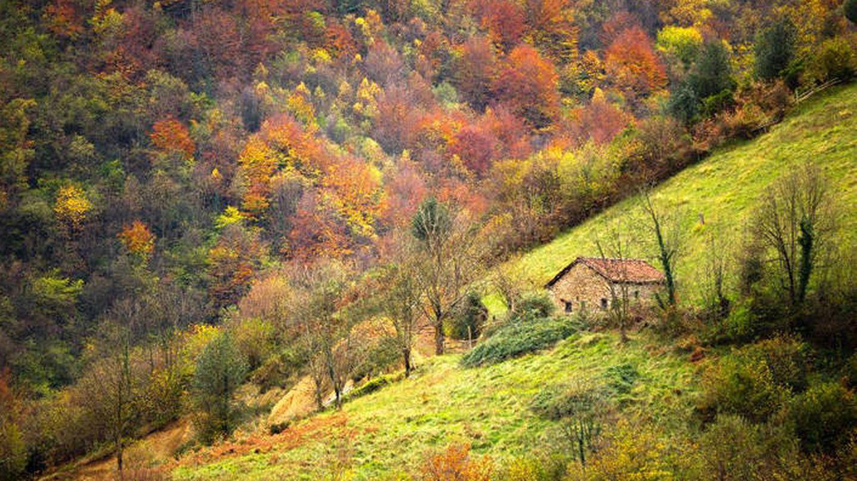 Paisaje de Lena. (Turismo de Asturias)