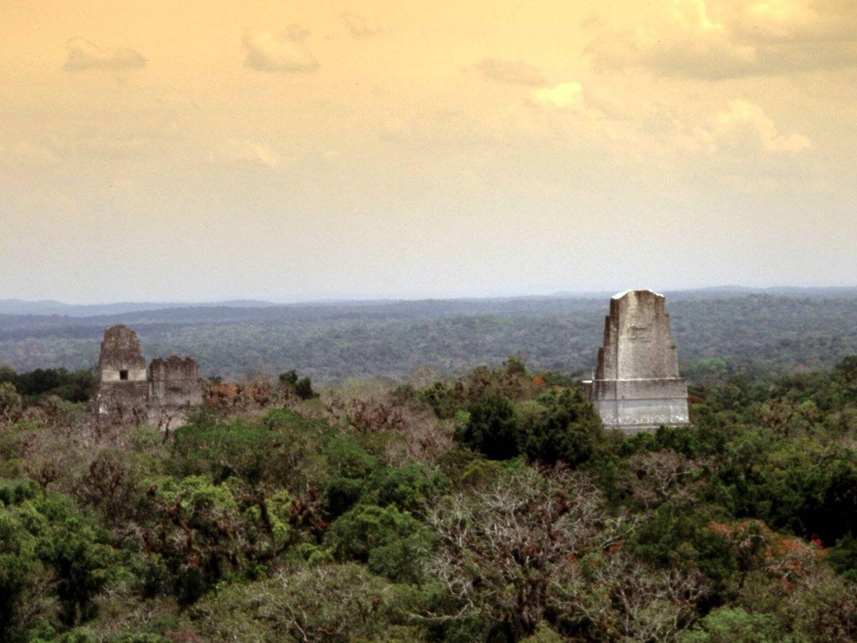Foto: Templos de Tikal en Guatemala.