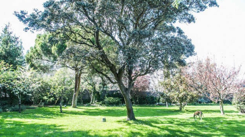 Su imponente jardín de 2.000 metros cuadrados. (Idealista)