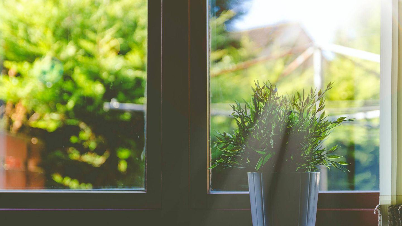 Cambios en casa para un hogar más sostenible. (Adeolu Eletu para Unsplash)
