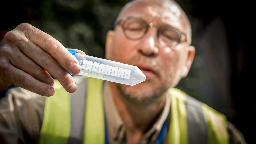 Foto: Búsqueda del mosquito tigre en holanda (Foto: EFE)