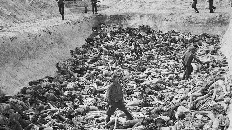 ¿Por qué el siglo XX fue tan violento? Una respuesta inesperada