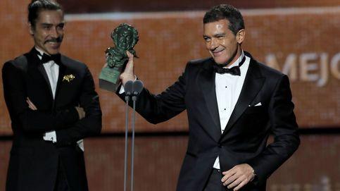 Premios Goya 2020, en directo   'Dolor y gloria', Goya a la mejor película