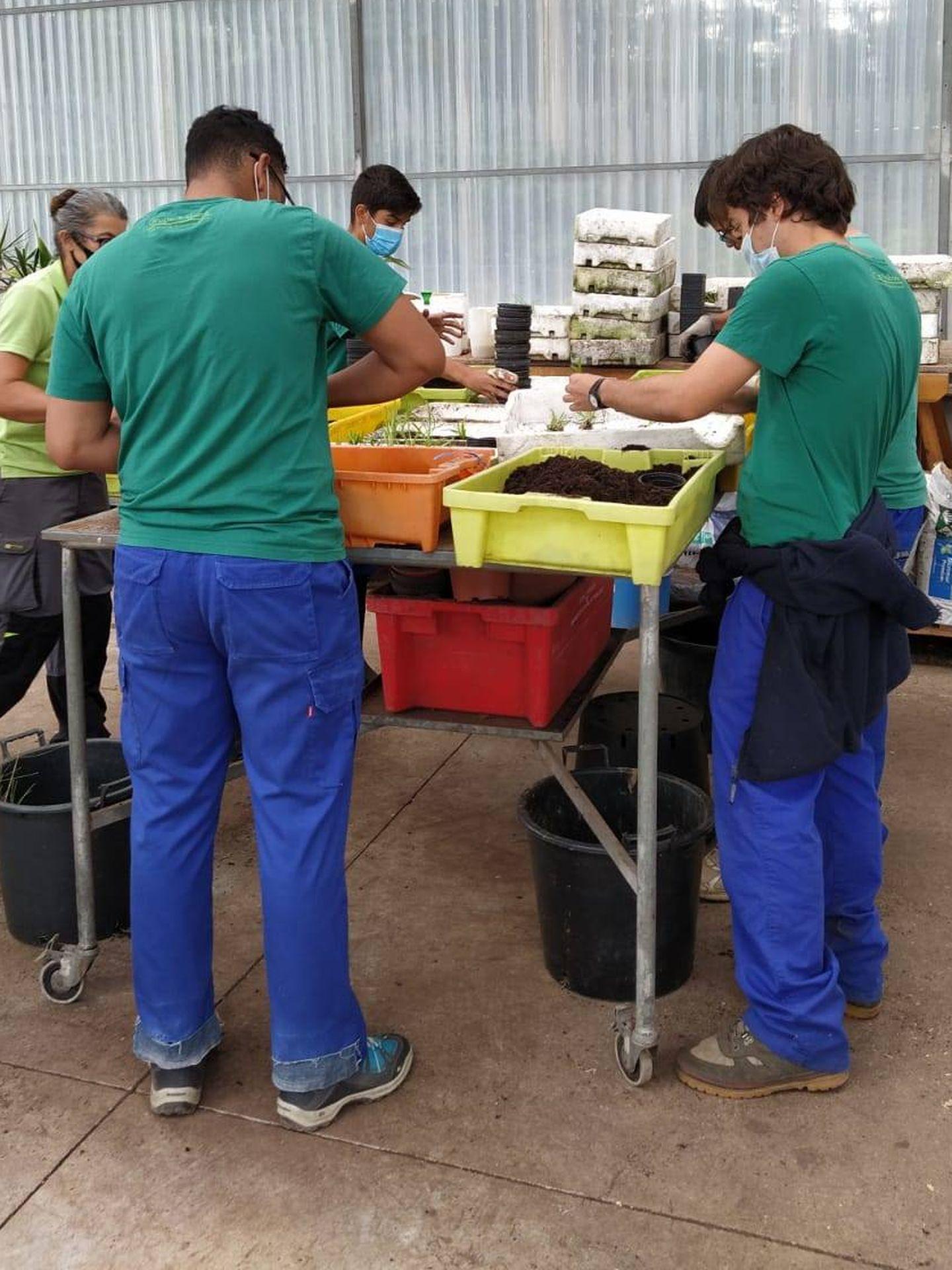 Trabajos desarrollados por la Fundación Paideia. (Cortesía)