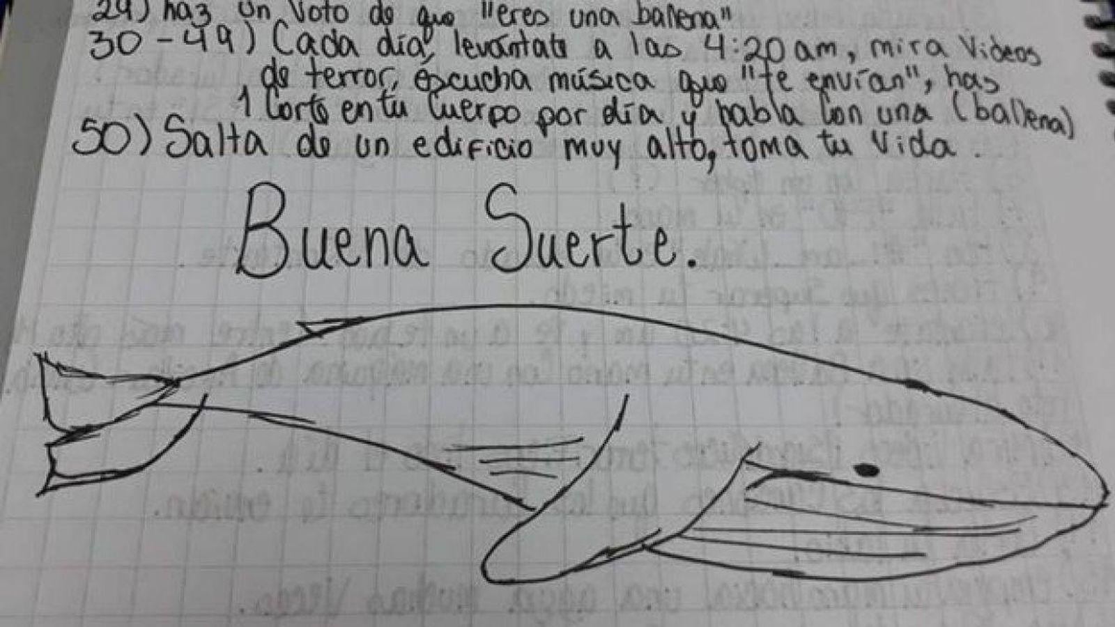 Latam - América Latina: La ballena azul, ¿responsable de la ola de ...