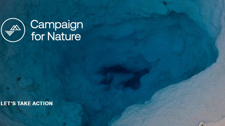 Un multimillonario suizo donará mil millones de dólares para salvar el planeta