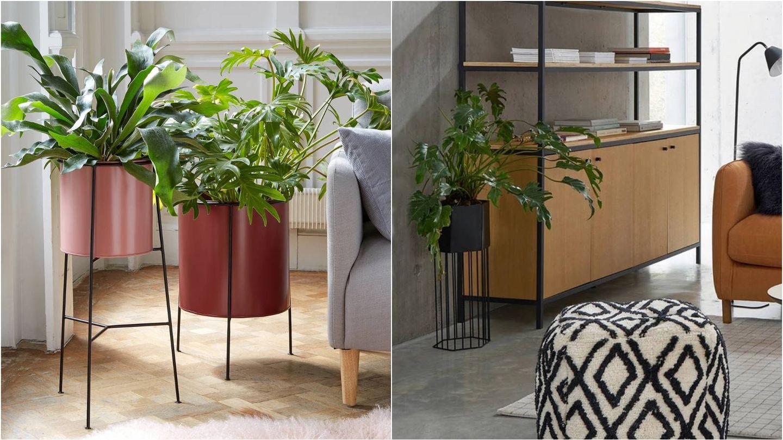 Maceteros estilosos para decorar tu casa con plantas de La Redoute. (Cortesía)