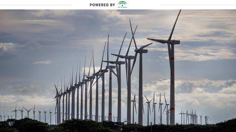 Andalucía quiere convertirse en un referente de la lucha contra el cambio climático