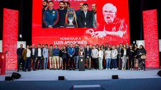 ¿Habrá negocio con el documental homenaje a Luis Aragonés?